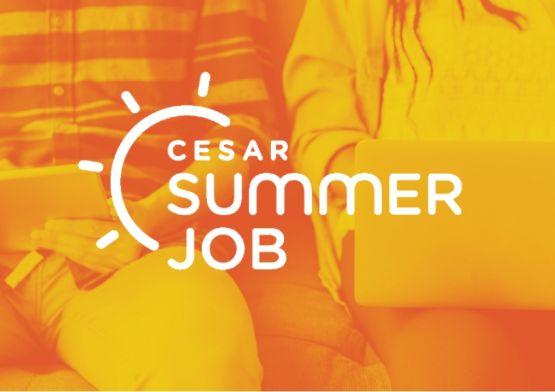 CESAR abre inscrições para o Programa Summer Job