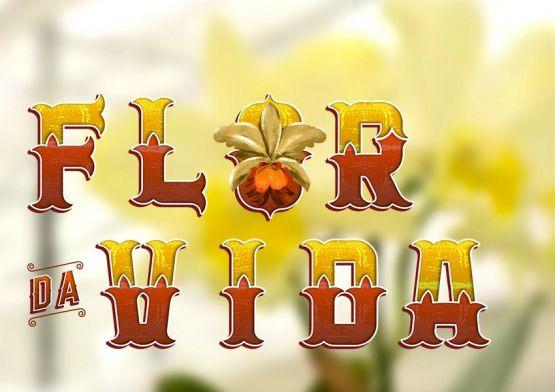 Flor que abre uma vez por ano lembra mulheres sobre exame de colo do útero